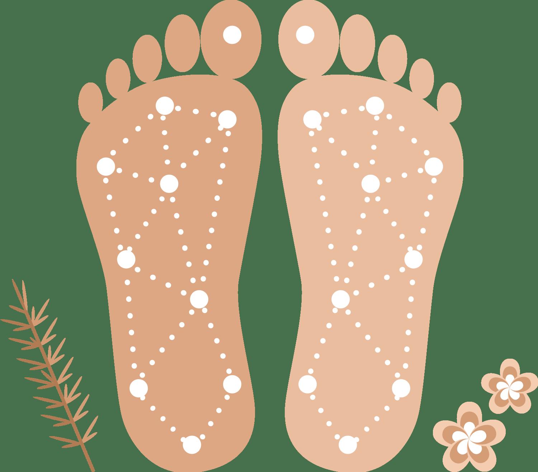 Animation af Zoneterapi punkter under fødder